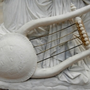 Turtle shell lyre d'orsay